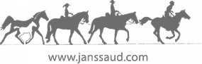 logo janssaud footer